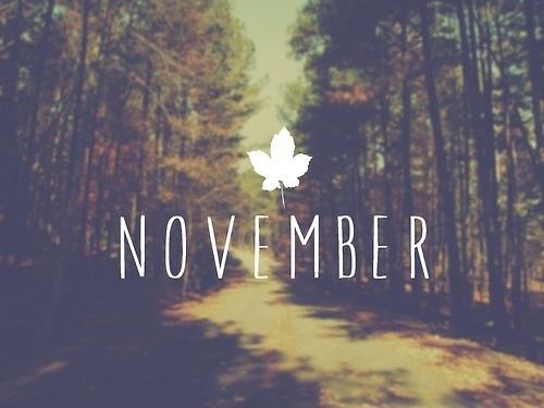 Les RDVs november 2015