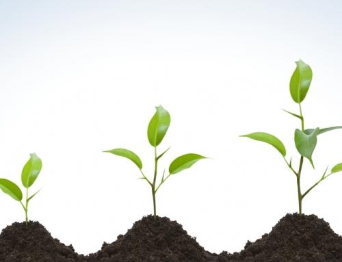 New Work Class : les 5 raisons pour postuler au MBA Express
