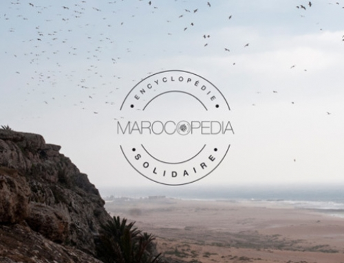 Interview avec Marocopédia, la start-up du Pitch Lab 24